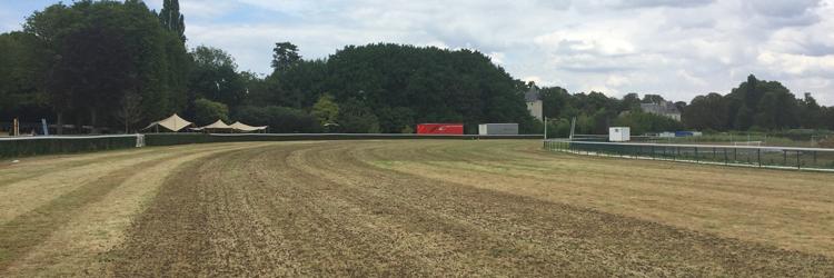 Gazons sportifs - Carottage hippodrome Longchamp